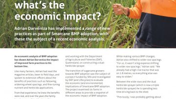 What's the economic impact of Smartcane BMP?